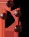 rh-201-aronia-muttersaft-bio-3